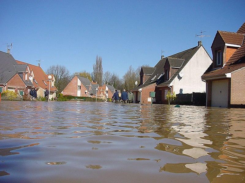 les dégâts humides accidentels - CC by Lamiot